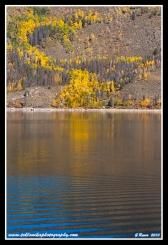 Lakeshore_Colors