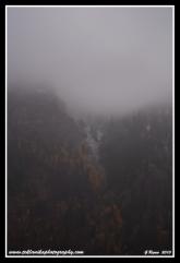 Foggy_Mountain