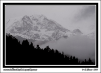 Mountain_Fog_2