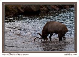 Battling_The_River