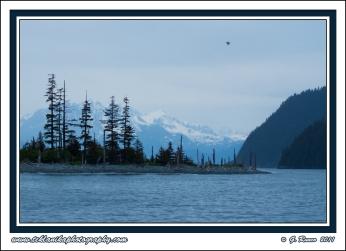 Coastal_Alaska