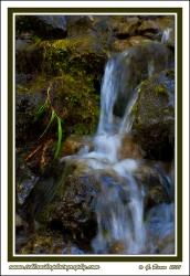 Creek_Beauty