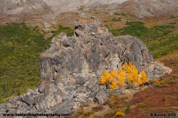 Fall_Rocks