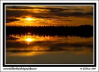Taiga_Sunset