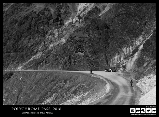 Polychrome Pass, 2016