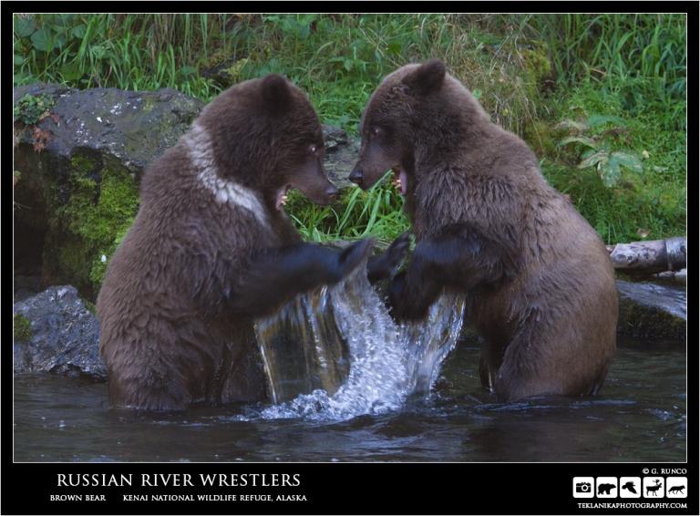Russian River Wrestlers