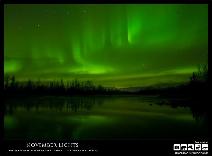 November Lights