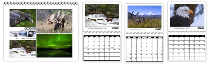 2017_calendar_banner
