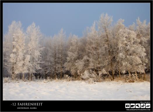 -12 Fahrenheit
