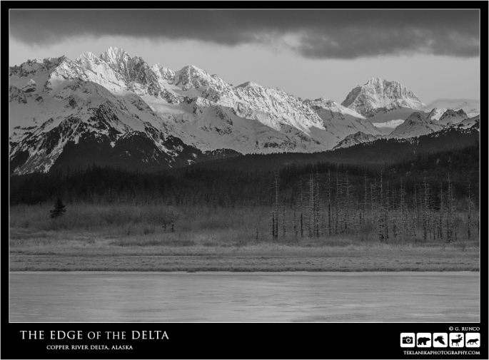 Edge of the Delta